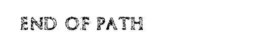 End Of Path